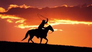 Cowboy  (Photo - linked2leadership.com)