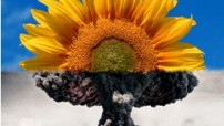 Nuclear Free World - ideal for all (WPP photo archive)