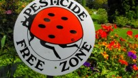 Pesticide Free Zone -- photo for education only