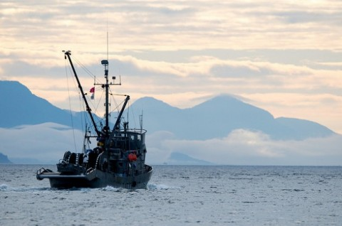 A trawler in Johnstone Strait, BC, Canada. Human activities such as pollution, overfishing, mining, geo-engineering and climate change have made an international agreement to protect the high seas more critical than ever. Credit: Winky/cc by 2.0