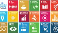 17 UN Goals to achieve (WPP File)