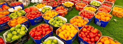 Fresh food to consume amid artificial offers (Photo by FAO.org)