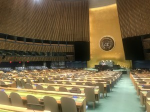 Empty UN General Assembly due to the COVID-18 Pandemic (Photo by Erol Avdovic 2020 WebPublicaPress)